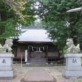 Photos: 熊野神社(多摩市)