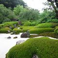 Photos: 明月院(鎌倉市)庭園