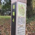松山城(埼玉県比企郡吉見町)三郭