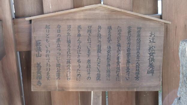 善長寺(館林市)お辻・お松供養碑