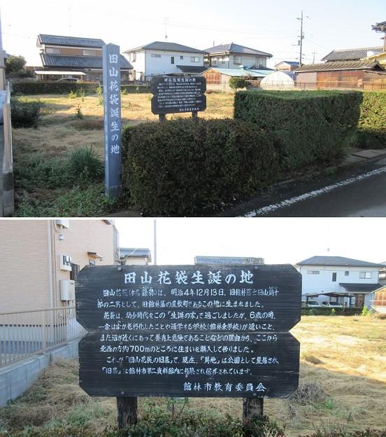 田山花袋生誕地(館林市)
