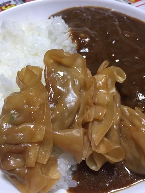 先日の宇都宮土産。餃子カレー