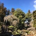 恵林寺(甲州市小屋敷)庭園