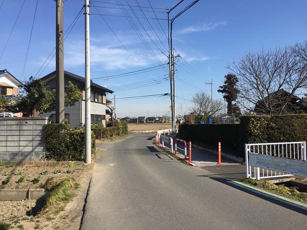 天神島城(一色氏館。幸手市)水路は堀跡
