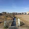 天神島城(一色氏館。幸手市)堀跡