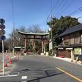 Photos: 鷲宮神社(久喜市)大鳥居