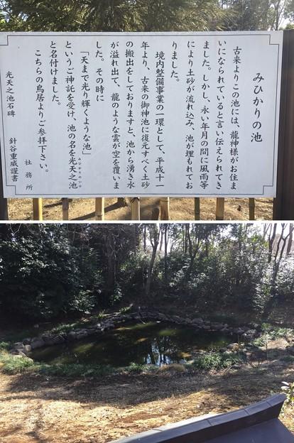 鷲宮神社(久喜市)光天之池(みひかりのいけ)