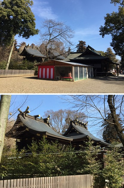 鷲宮神社(久喜市)本殿