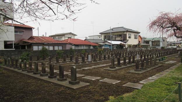 常盤共有墓地(水戸市)水戸殉難志士墓地第二