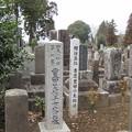 常盤共有墓地(水戸市)日本の保母第一号 豊田芙雄子墓