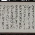 水戸城(茨城県)二の丸 大シイ