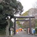 常盤神社(水戸市)東鳥居
