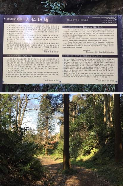 大仏坂切通(鎌倉市)