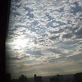 Photos: 東の空。