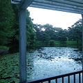 Photos: ため池