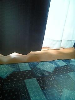 青カーテン