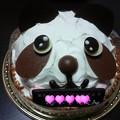 Photos: ケーキは土曜に食べましたが。坊っちゃんお誕生日おめでとう
