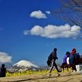 写真: 富士見日和