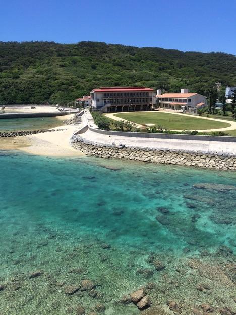 サンゴの海に囲まれた小中学校