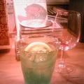 新緑のカツラ