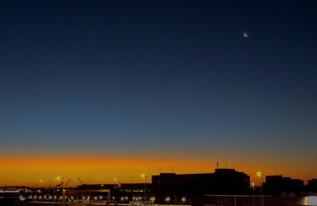 写真: 朧月夜
