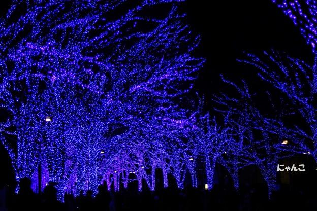 写真: ~青の洞窟~
