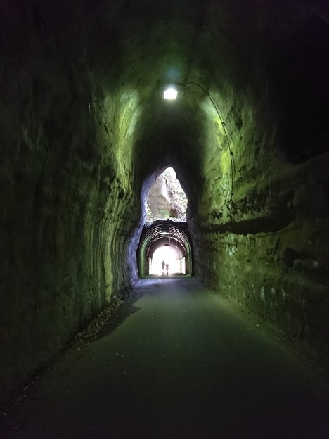 緑のトンネル