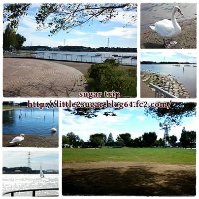 池のある公園1