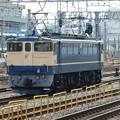 #208 JR東日本EF65 1105 2016.5.31