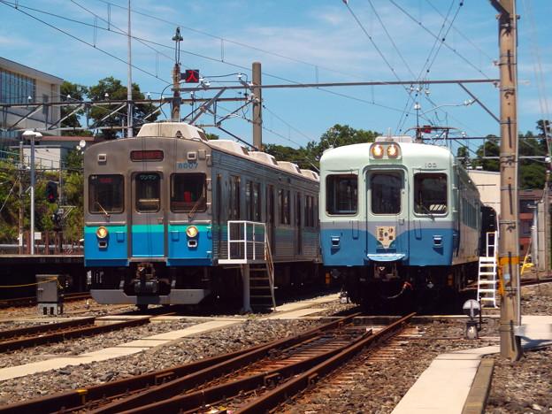 Photos: 伊豆急行 8000系とクモハ103の並び 2015.7.20