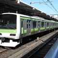 Photos: 山手線E231系 東トウ528F 2016-3-17