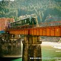 写真: 鎌瀬の鉄橋を渡るかわせみやませみ。