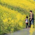 Photos: 春休み