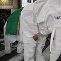 大須大道町人祭(象2)