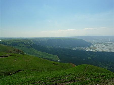 新緑の大観峰(7)