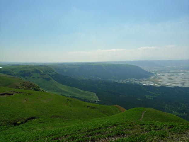 写真: 新緑の大観峰(7)