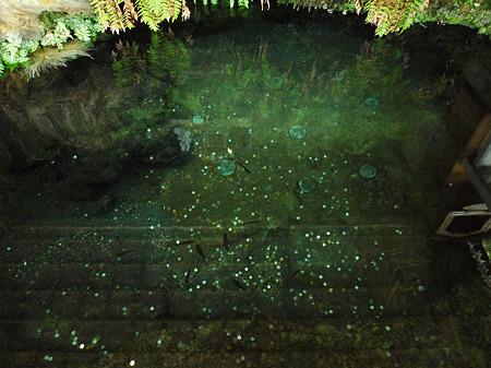 鏡ヶ池(4)