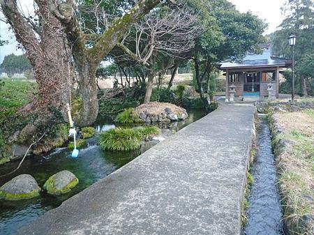 池の川水源(2)