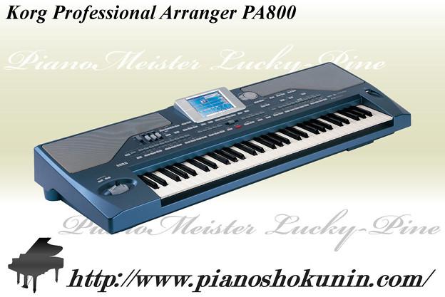 Korg Professional Arranger PA800