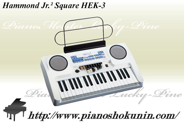 Hammond HEK-3.