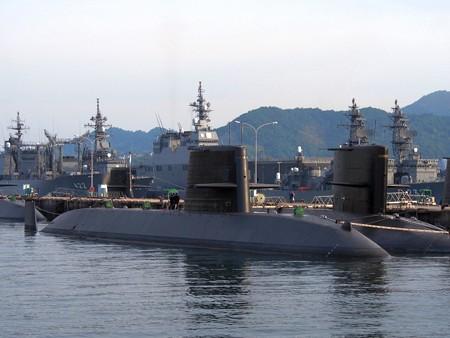 areikarasukojima21