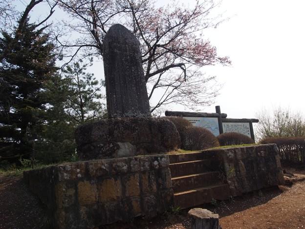 iwadonosan56
