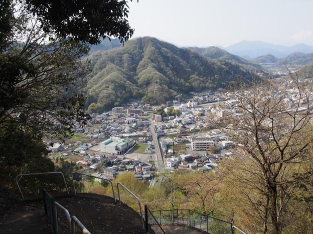 iwadonosan75