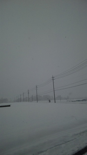 雪なんですけど