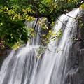 Photos: 鱒見の滝