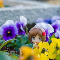 Photos: お花ニャ