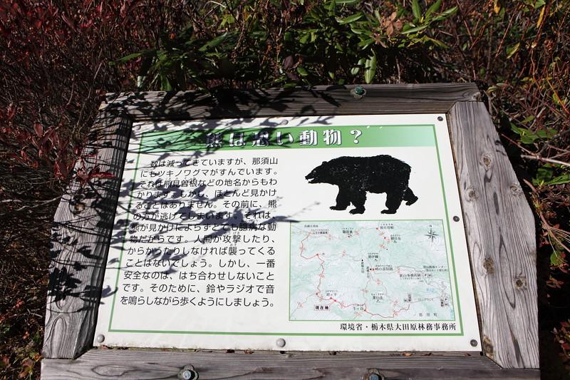 IMG_8917那須 茶臼岳 姥ヶ平の紅葉