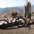 写真: 大野山山頂