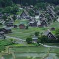 新緑の白川郷(1)