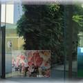 金沢21世紀美術館(1)  加賀友禅の壁(市民ギャラリー)
